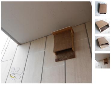 animali-casetta-per-pipistrelli-bat-box-da-balcone-malice's craftland.jpg