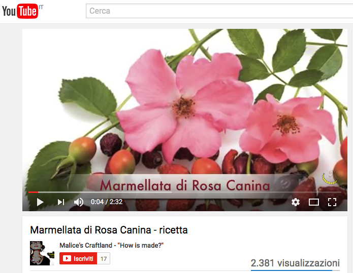 "video malice's craftland ""how is made?""- tutorial - marmellata - rosa canina"
