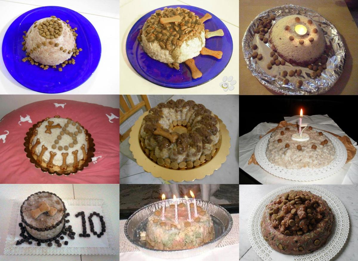 malice's craftland - malice for animals - aiutare animali randagi cane gatto cani gatti foggia torte torta