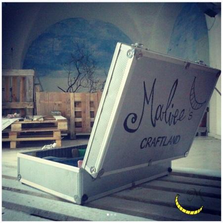 Malice's Craftland - pro bono - volontariato - animali randagi